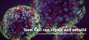The first stem cell factory