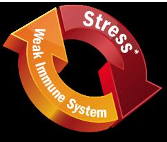 weak immunity system-1